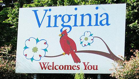 pest control services in Virginia; Call Leo's Pest Control